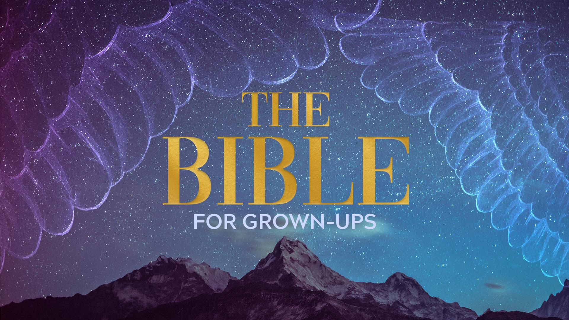 The Bible For Grown-Ups • First Church DeMotte